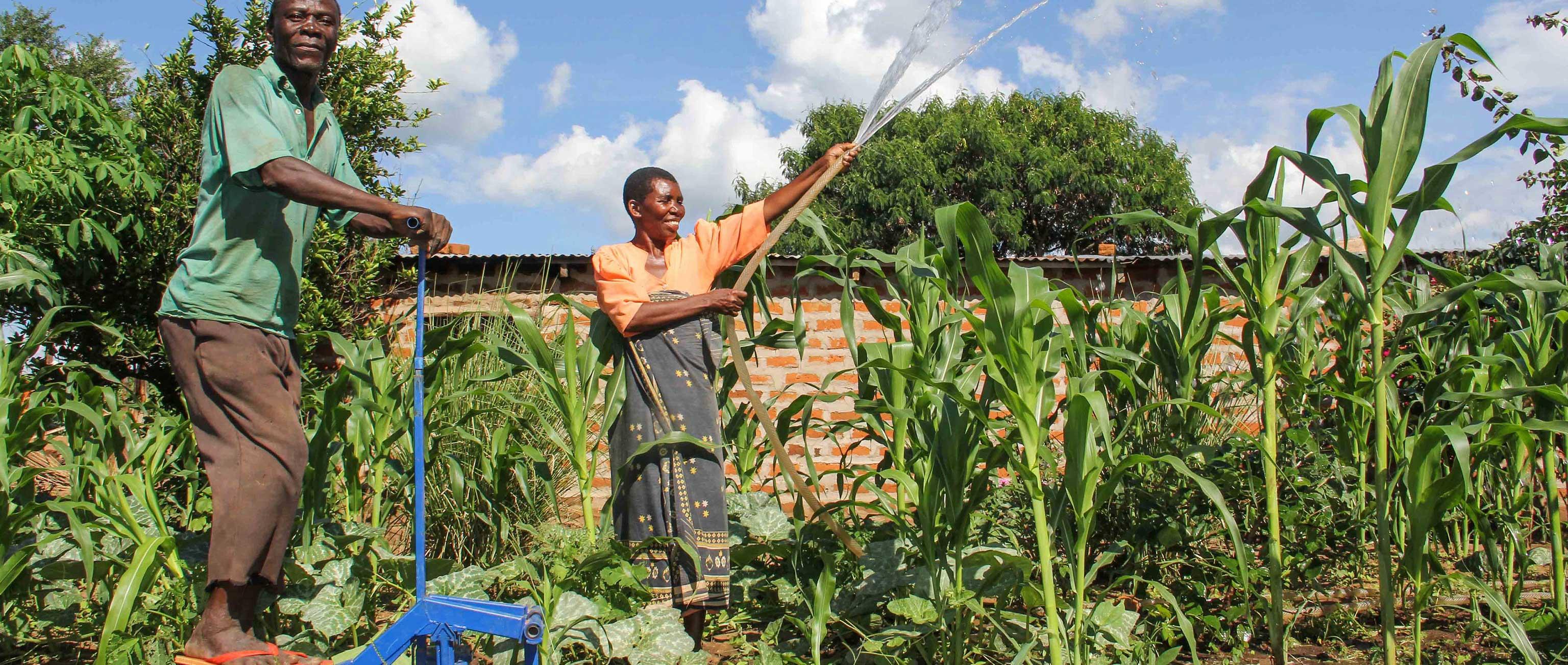 How Kickstart is Mobilizing an Irrigation Movement in Sub-Saharan Africa